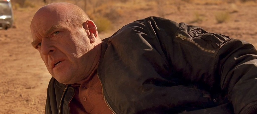 Hank Schrader, shot in the head