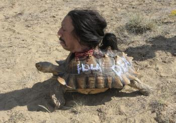 Tortuga, decapitated and attached to a tortoise